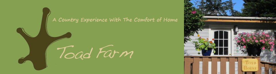 Toadfarm – A Tlell Guest House