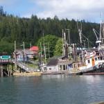 queen charlotte dock